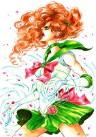 Sailor Jupiter by XViolacea