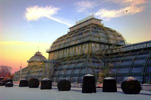 Palm House by MacsBlack