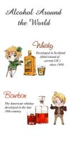 Alcohol around the world by DianaSan