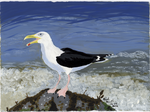 Greater Black-Backed Gull by SlateGray