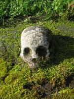 Objects 117 skull by Dreamcatcher-stock