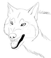 Angry Wolf Sketch for 20 points by Juzoka-Vargulf-Eqqus