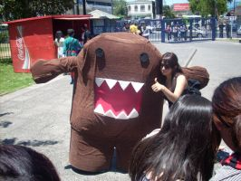 Domo Cosplay AE08 by HardVector