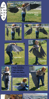 Realistic Wing - Update 02 by Sunnybrook1