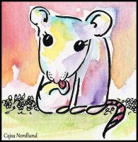 Not very serious rat by cajsa