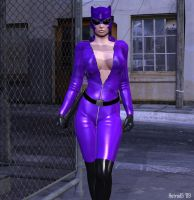 Catwoman 04 by hotrod5