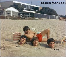 Beach Monkees Desktop by Princess-Kraehe