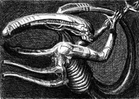 Alien_Giger by Darth-Vanya