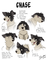 Chase - Expression Sheet by Skailla