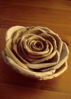 Toilet Roll Rose 2 by deepset