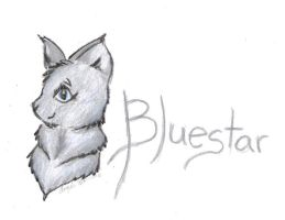 Bluestar by wolfylittleartist