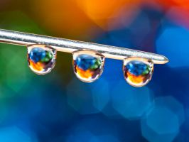 Hanging by a thread by pqphotography
