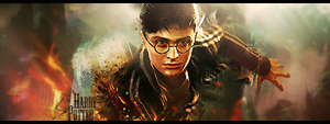 Harry Potter signature banner by z4hr4dk4r