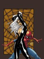 spidey and blackcat by soulrailer