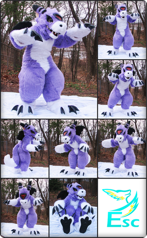 Dorumon Digimon Dragon Fursuit (V.2) (2014) by Eternalskyy