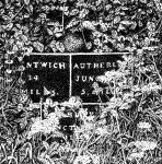 nantwich to autherley junction by graphic-rusty