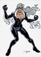 Black Cat Colors by wardogs101