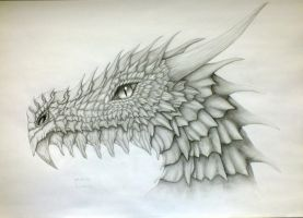 Dragon Head by Lazurra