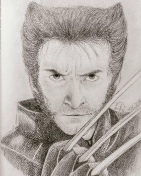 Young Wolverine by Laily95