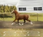 Forget Me Alejandro TOEC by White-Ocean