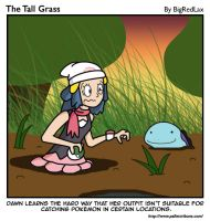 The Tall Grass 15 by BigRedJake