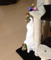Kirby and Friends with Sakurai\'s Cat by ogamashu
