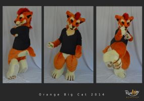 Orange big cat full 2 by Adele-Waldrom