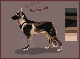 GSDB's Scorched Sable by GSDBreeders