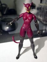 LEGENDS OF GOTHAM CITY: Catwoman Custom Figure by darklord1967
