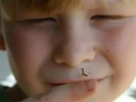 curious mantis  curious boy by redtailhawker