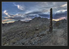 Desert HDR I by HogRider