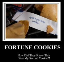 Motivational Poster 3: Fortune by babyboybluecrazy
