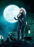 Black Cat 2 by JdelNido
