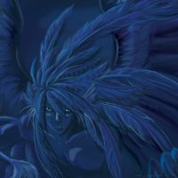 blue feathers by Trillium248