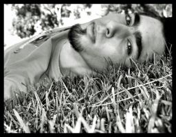 Carlos in the grass... by Perlekes