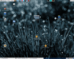 My disorganised desktop by towel401
