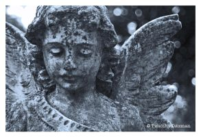 Angel in Black and White 02 by tditzgb