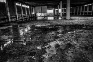 Decay from within by Vitaloverdose