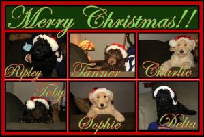 Christmas Card 2013 by Synthemum