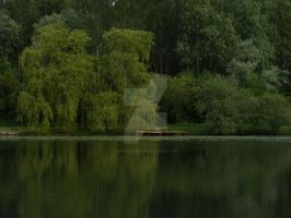 Fishing Pond by Witchling-V