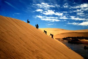 High Dunes by dalan