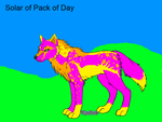 Solar of pack of day by catunicorn5841
