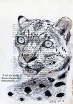 Snow Leopard (old book page) by Olvium