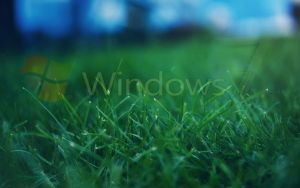 Wallpaper HD Windows 7 by SafuanHD