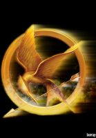 The Hunger Games by Innray