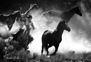 Horse-round-up by photocrafter