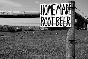 "Home made ""Root Beer"" by fotograff"