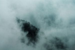 Fog stock 03 by Malleni-Stock