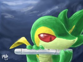 Snivy and Flute by Kampidh