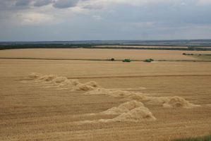 Harvest-time Fields Stock Photo #5 by croicroga